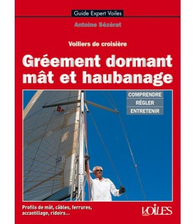 Gréement dormant, mât et haubanage