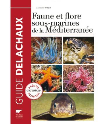 Faune et flore sous-marines de Méditerranée