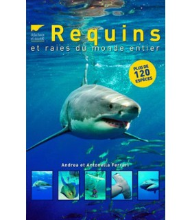 Requins et raies du monde entier
