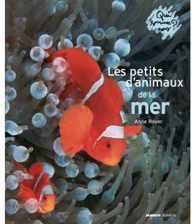 Les petits d'animaux de la mer